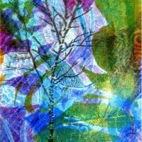 tree-aurora-borealis